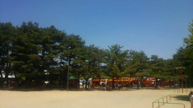 長井の白つづじ公園